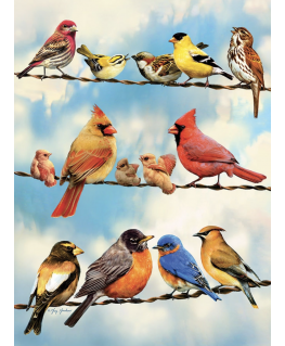 Cobble Hill puzzle 500 pieces - Birds on a Wire