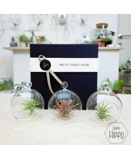 Gift box 1 - Meneertje Haas