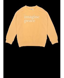 Sweater AM.Rocky.19 - Ammehoela