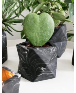 Palua Medium Black Marble - House Raccoon