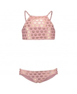 Bikini seashell - Shiwi