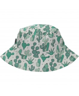 Zonnehoed Cactus - Maxomorra