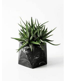 Mare black marble – Large - House Raccoon