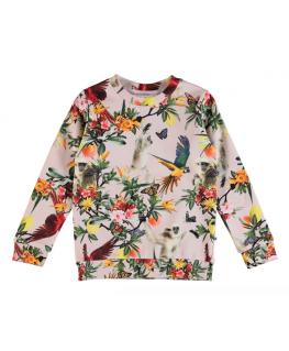Mara Sweat Shirt Birds and Monkeys - Molo
