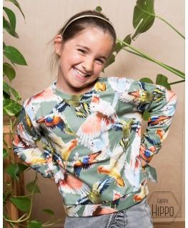 Malissa Sweat shirt Budgies - Molo