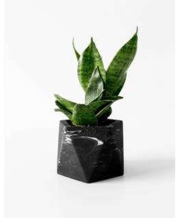 Mare Planter - Medium - Black Marble - House Raccoon