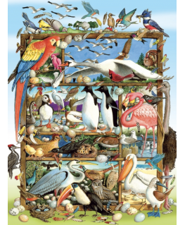 Cobble Hill family puzzle 350 pieces - Birds of the world